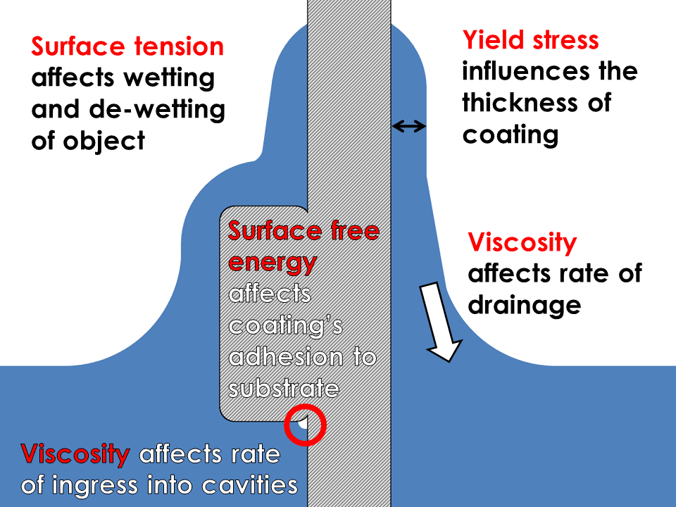 Rheology and surface tension influences the dip coating process in a number of ways that can either help or hinder performance.
